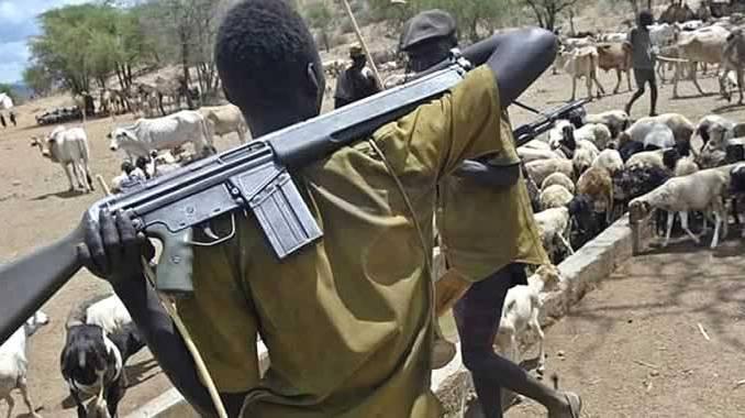 VIDEO: '25 Killed', Houses, Shops Burnt as Herdsmen Invade Igangan