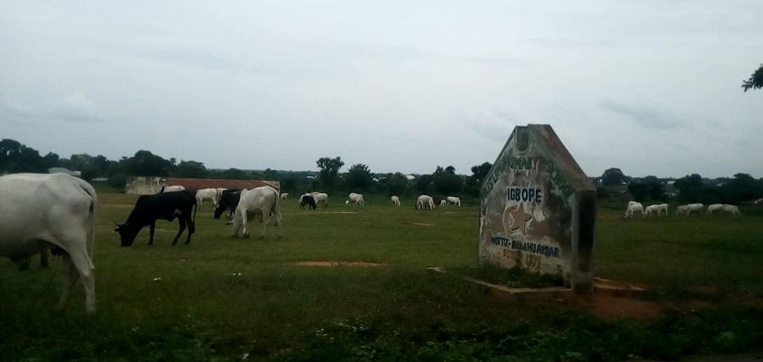 INVESTIGATION: Farmer-Herder Crises in Oyo have Driven over 800 Children out of School